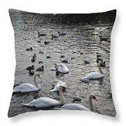 Waterpark Throw Pillow