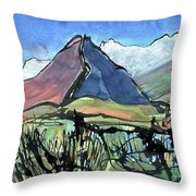 Waterpipe Gully Throw Pillow