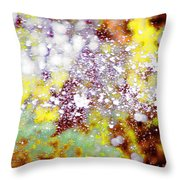 Waters Spray In Summers Delight Throw Pillow