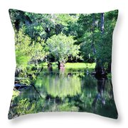 Waterscape #1 Hillsborough River Throw Pillow