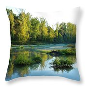 Waterscape #46 Throw Pillow
