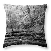 Waterscape In Bw Throw Pillow