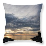 Waterscape In Gray And Yellow Throw Pillow