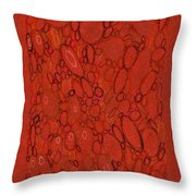 Watershed #2 Throw Pillow