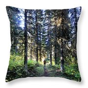 Waterton Valley Trail Detail - Glacier National Park Throw Pillow
