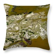 Waterway 15 Throw Pillow