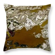 Waterways 14 Throw Pillow