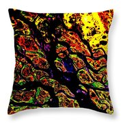 Waterways Throw Pillow