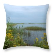 Watery Path Throw Pillow