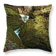Watkins Glen Waterfall Throw Pillow