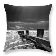 Wave Defenses Throw Pillow by Meirion Matthias