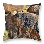 Wave Of Color In The Alabama Hills Throw Pillow by Ray Mathis