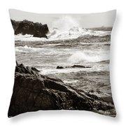 Waves Crashing Throw Pillow