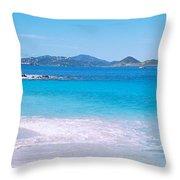 Waves Crashing On The Beach, Turtle Throw Pillow