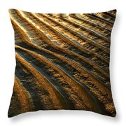Waves Of Gold Throw Pillow