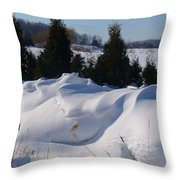 Waves Of Snow Throw Pillow