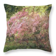 Waves Of Spring Throw Pillow