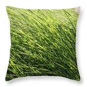 Waving Grass Throw Pillow
