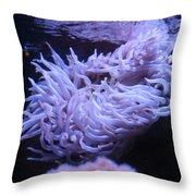 Waving Sea Anemone - Aquarium Throw Pillow