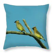 Wax Wings  Throw Pillow