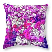 Waxleaf Privet Blooms On A Sunny Day With Magenta Hue Throw Pillow
