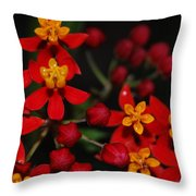 Waxy Throw Pillow