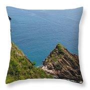 Way Cata Bay Throw Pillow