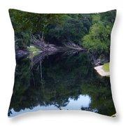 Way Down Upon The Suwannee River Fisheye Throw Pillow