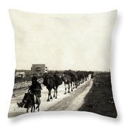 Way To Bethlehem Throw Pillow