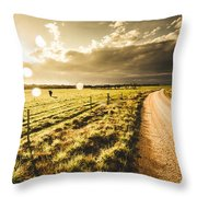 Way To Policemans Point Tasmania Throw Pillow