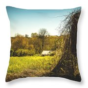 Forgotten Farmlands Throw Pillow