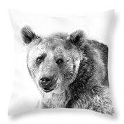 Wb Portrait Of A Bear Throw Pillow