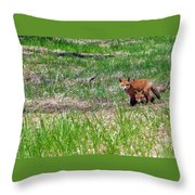 We Are 3 Red Fox Puppies Throw Pillow