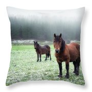 We Are Cold Throw Pillow