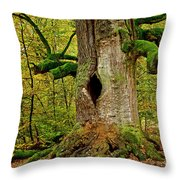 We Are Here Since 1000 Years 1 Throw Pillow