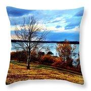 Wealth Of The Autumn Season Throw Pillow