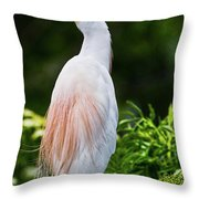 Wearing Spring Colors Throw Pillow