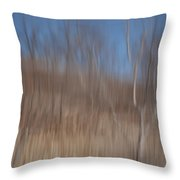 Weary Reflections Throw Pillow