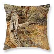 Weather Tree And Wildflowers Throw Pillow