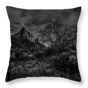 Weather Tree Zion National Park Throw Pillow by Scott McGuire