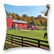 Weathercock Farm Throw Pillow