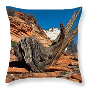Weathered Check Throw Pillow