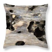 Weathered Driftwood Throw Pillow