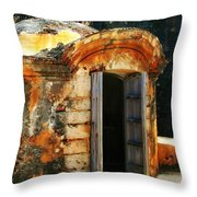 Weathered Entry Throw Pillow