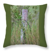 Weathered Fence Post Throw Pillow