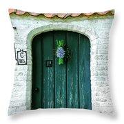 Weathered Green Door Throw Pillow