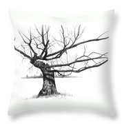 Weathered Old Tree Throw Pillow
