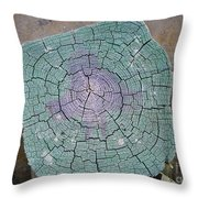 Weathered Pier Throw Pillow