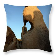 Weathered Rock Throw Pillow