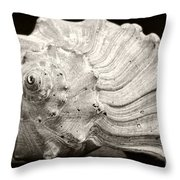 Weathered Treasure 2 Throw Pillow